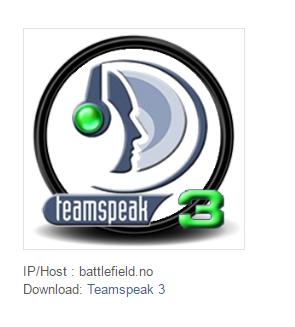 teamspeak33.png